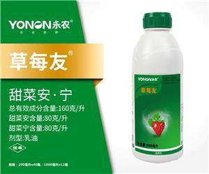草莓友-甜菜安.宁160g/L乳油